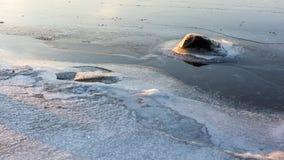 Jour d'hiver sur la rivière Photo libre de droits