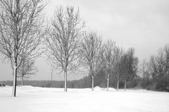 Jour d'hivers Images libres de droits