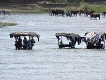 Jour de blanchisserie sur Lago Cocibolca Nicaragua photographie stock libre de droits