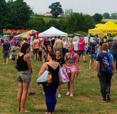 Jour de carnaval de Harthill sur le champ d'exposition photographie stock