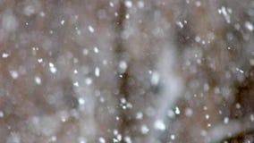 Jour de chute de neige au foyer, tache floue élevée banque de vidéos