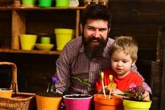 Jour de famille greenhouse Nature d'amour d'enfant d'homme barbu et de petit gar?on P?re et fils Jour de p?res jardiniers heureux photos stock