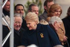 Jour de la Déclaration d'Indépendance à Vilnius Photos stock