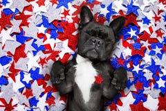 Jour de la Déclaration d'Indépendance 4ème de chien de juillet Image libre de droits