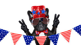 Jour de la Déclaration d'Indépendance 4ème de chien de juillet Image stock