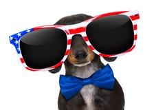Jour de la Déclaration d'Indépendance 4ème de chien de juillet Photo stock