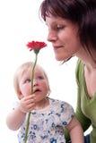 Jour de mères Photos stock