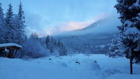 Jour de Milou dans Whistler Image stock