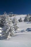 Jour de montagne de l'hiver images libres de droits