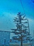 Jour de neige photo stock