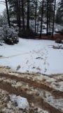 Jour de neige d'amusement au pays des merveilles d'hiver Photo stock