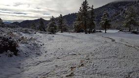 Jour de neige d'amusement au pays des merveilles d'hiver Photos libres de droits