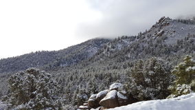 Jour de neige d'amusement au pays des merveilles d'hiver Images libres de droits