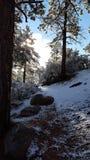 Jour de neige d'amusement au pays des merveilles d'hiver Photo libre de droits