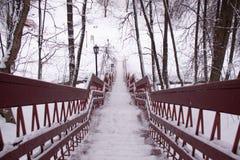 Jour de neige d'hiver de Moscou Russie en parc de ville photos libres de droits