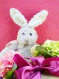 Jour de Pâques de poupée et de boîte-cadeau de lapin Photographie stock