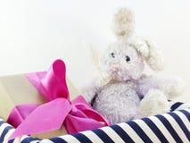 Jour de Pâques de poupée et de boîte-cadeau de lapin Images libres de droits