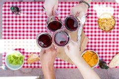 Jour de pique-nique avec des amis encourageant avec des verres de vin Images libres de droits