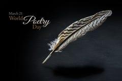 Jour de poésie du monde avec une plume modelée noire et blanche au-dessus d'a Photos stock