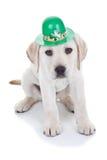 Jour de St Patricks Image stock