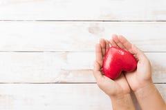 Jour de valentines, soins de santé, amour, concept de donation d'organe Le femme remet le coeur de rouge de fixation image libre de droits