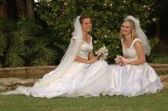 Jour du mariage heureux Images libres de droits
