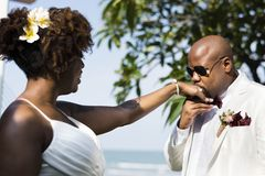 Jour du mariage du ` s de couples d'afro-américain Photographie stock