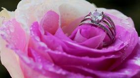 Jour du ` s de désir, d'amour et de Valentine banque de vidéos