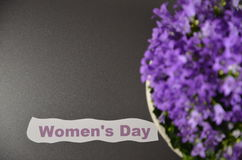 Jour du `s de femmes Photographie stock libre de droits