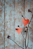 Jour du ` s de St Valentine Amour Un symbole de l'amour Un coeur Dessin sur le sable Le crabot s'est levé Images libres de droits