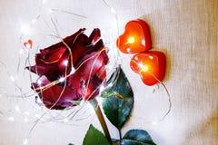 Jour du `s de Valentine Rose de rouge sur la table et dans le poids prises de coeur et de vin monde dans le poids Image libre de droits