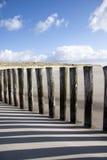 Jour ensoleillé à la mer baltique Images stock