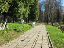 Jour ensoleillé d'automne en parc suburbain tranquille Photos stock