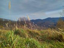 Jour ensoleillé d'automne en retard dans les montagnes image stock
