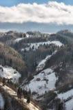 Jour ensoleillé d'un hiver, sur les collines sauvages de la Transylvanie avec des montagnes de Bucegi à l'arrière-plan Photographie stock libre de droits