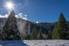 Jour ensoleillé dans la neige photo stock