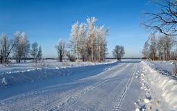 Jour ensoleillé de l'hiver Photo libre de droits