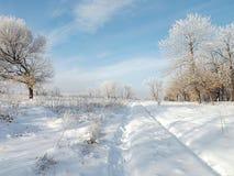 Jour ensoleillé et givré d'hiver avec le gel et la neige Photographie stock