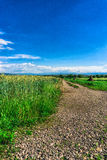 Jour ensoleillé et nuages Photographie stock