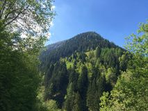 Jour ensoleillé sur des Alpes Photos stock