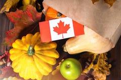 Jour heureux de thanksgiving dans le Canada Feuilles de légumes, de potirons, de courge, de pommes, d'érable et de chêne, glands  Photographie stock