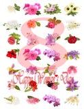 Jour heureux du ` s de femmes, ressort Images stock