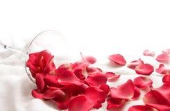 Jour heureux du ` s de Valentine de pleine sensation avec les oeufs de poisson rouges dessus avec le tissu Photographie stock libre de droits