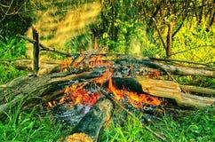Jour lumineux du feu chaud Photographie stock libre de droits