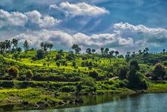Jour lumineux nuageux Image libre de droits