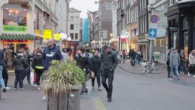 Jour néerlandais d'Amsterdam banque de vidéos