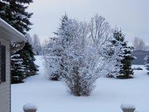 Jour neigeux hivernal froid Images libres de droits