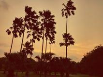Jour orageux Photographie stock