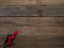 Jour ou ressort rouge de Pâques de tulipes photos stock