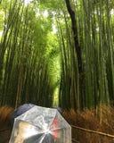 Jour pluvieux à Kyoto Photographie stock